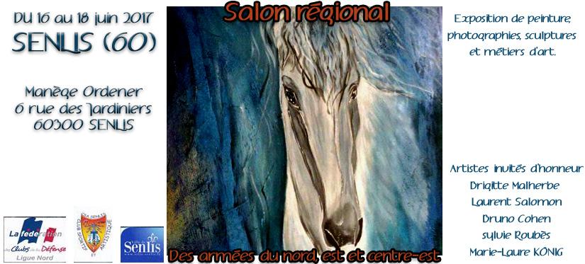 Salon regional senlis
